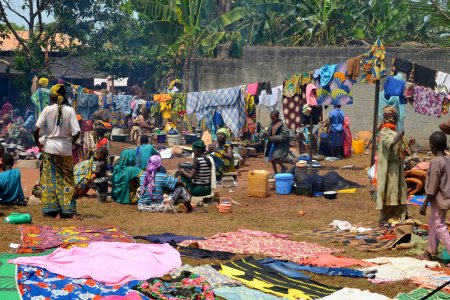 Refugees have established a camp on their way to Cameroon
