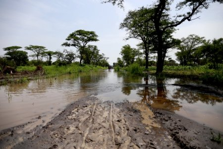 Floods in Palorinya