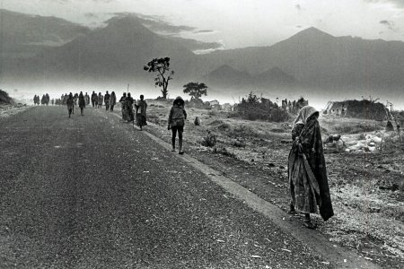 Rwandan refugees fleeing towards Congo-Zaire, 1994.